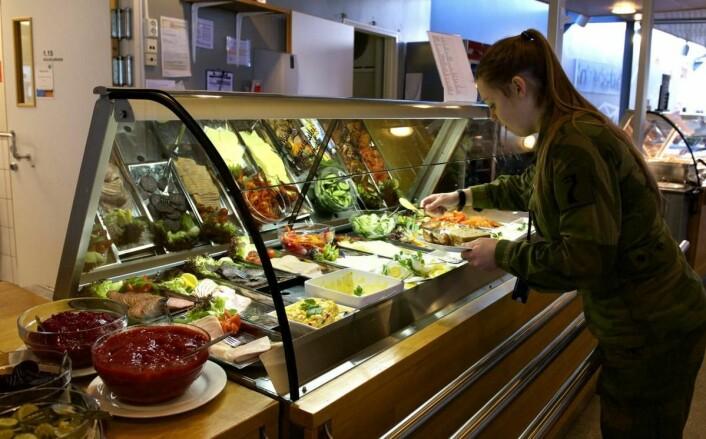 Økologisk satsing i Forsvaret. (Foto: Forsvaret)