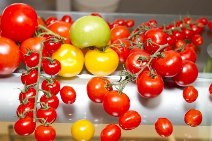 Mer veksthusgrønnsaker i kantinene. (Illustrasjonsfoto)