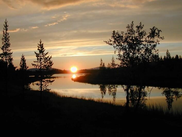 Femund Fjellstue ligger ved inngangen til Femundsmarka (bildet) fra sør. (Foto: Morten Holt)