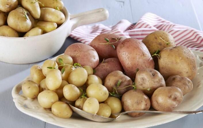 <br />Nordmenn flest er bevisste når de skal velge potetsort til julemiddagen. (Foto: Frukt.no)