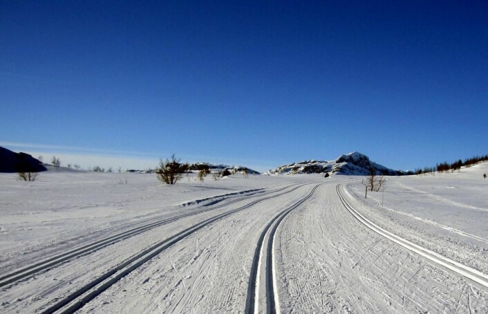 Selve varemerket for Beitostølen: Det er ikke mange som tilbyr et strøkent løypesystem på 1000 meters høyde, som her på toppen av alpinbakken, på vei inn i Jotunheimen.