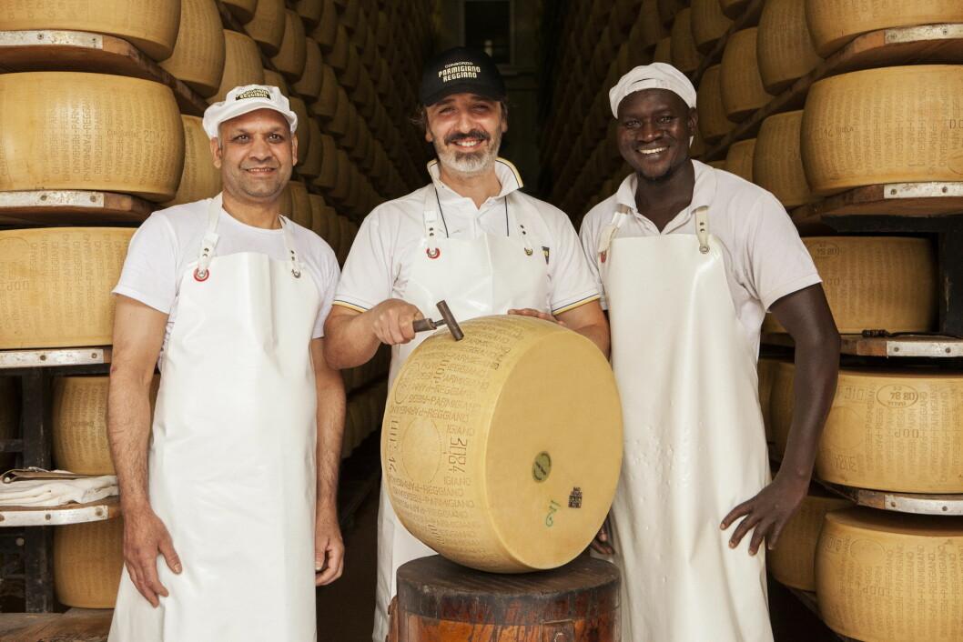 Produksjonen av Parmigiano Reggiano foregår fremdeles ved hjelp av håndkraft. (Foto: Matteo De Mayda)