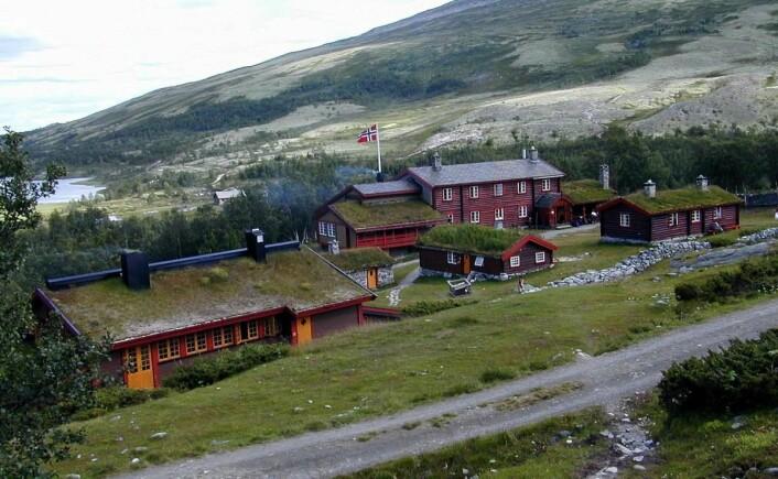 Bjørnhollia på østsiden av Rondane-massivet. (Foto: Morten Holt)