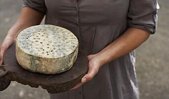 Hanen viser vei til verdens beste ost