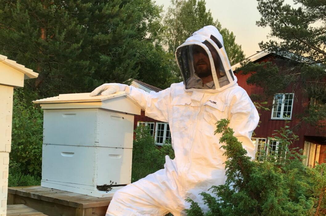 Andy Friedrichs i gang med honningproduksjonen med Honey Flow-kuber på Kleivstua. (Foto: Kleivstua)