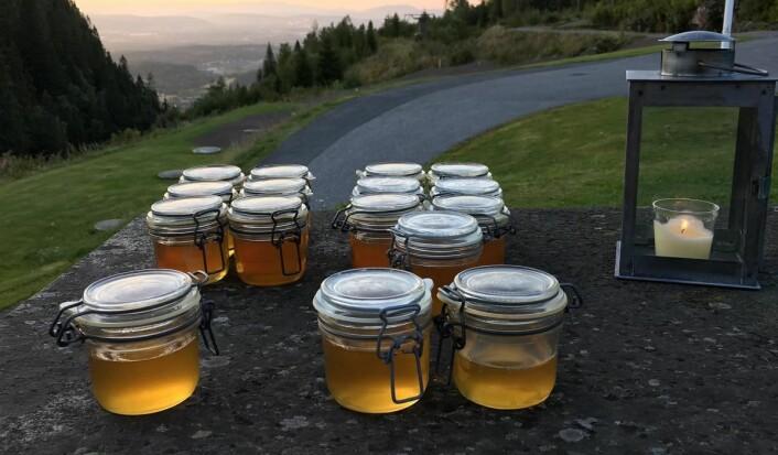 Egenprodusert honning til gjestene på Kleivstua. (Foto: Kleivstua)