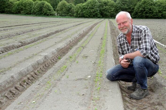 Roy Hasle i Rygge har brukt flere år på å teste nye typer reddiker. Nå lanseres de på markedet av Bama. (Foto: Morten Holt)