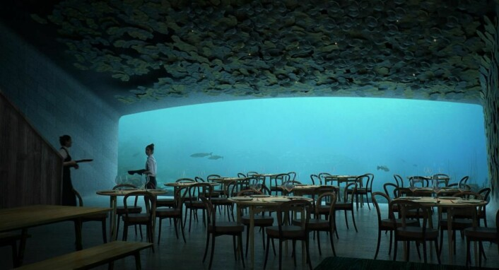 Restauranten, som får laveste punkt fem meter under havnivå, skal få 100 sitteplasser, og blir dermed verdens største undervannsrestaurant med sine 592 kvadratmeter. (Illustrasjon: MIR/Snøhetta)