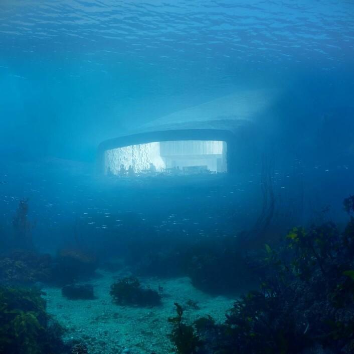 Restauranten sett fra havdypet. Vinduene i restauranten blir 40 cm tykke, slik at de skal tåle kraftige bølger. (Illustrasjon: MIR/Snøhetta)
