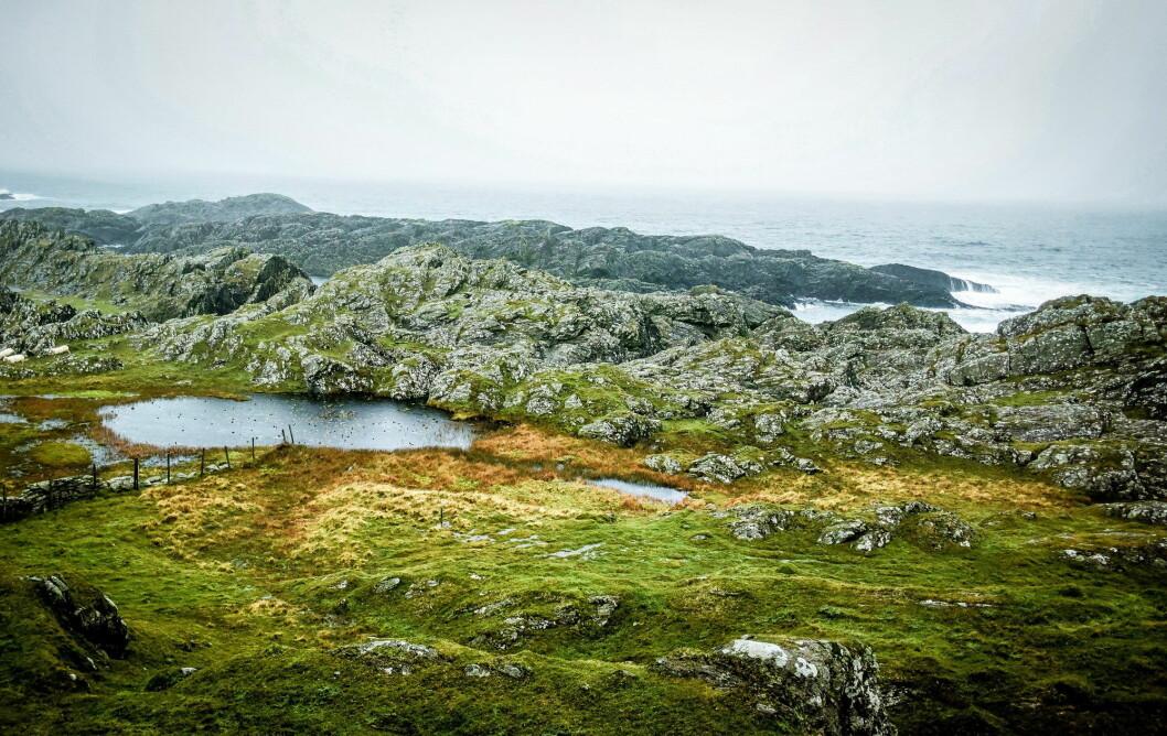 I dette området vest på Kvitsøy vil Base Property bygge et nytt spektkulært hotel. (Foto: Base Property)