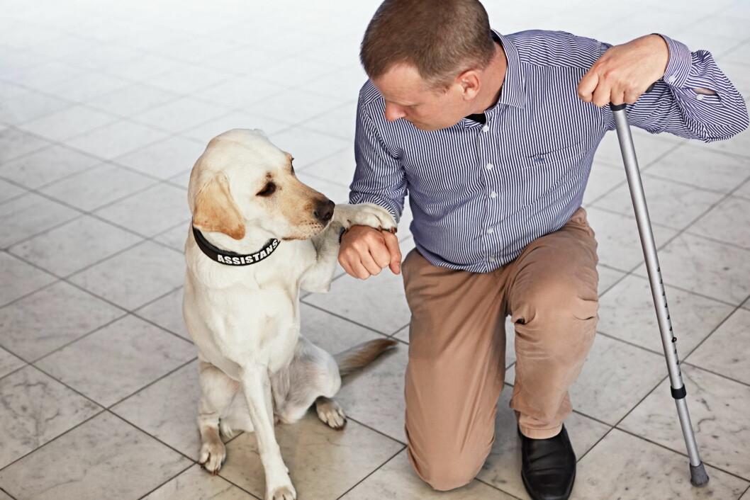 Magnus Berglund og servicehunden Dixi. (Foto: Scandic Hotels)