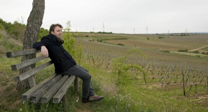 Simon Zimmermann skuer utover vinmarken til Weingut Wittmann.(Foto: Jørn G. Broll)