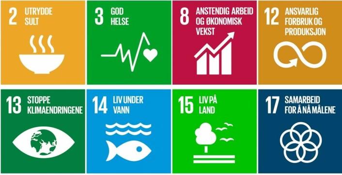 FNs bærekraftmål er fundamentet i Foodscape.