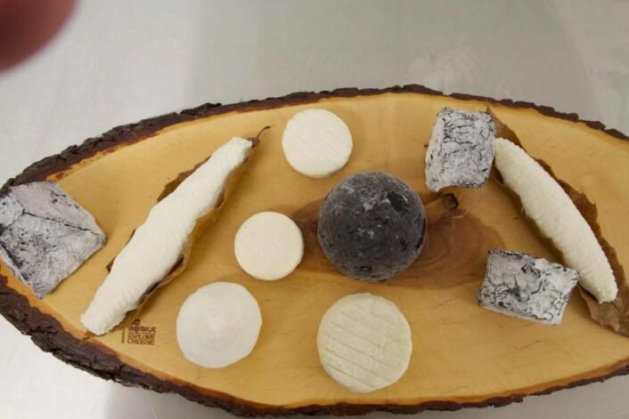 Bo Jensen skal delta i VM med seks oster. Hvilke seks det blir, blir bestemt i september. (Foto: Privat)