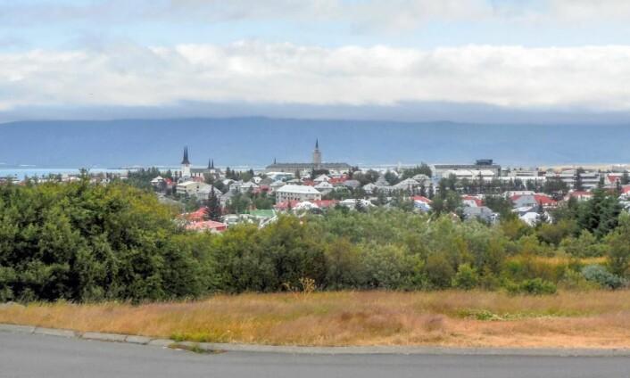 Dyrt: Reykjavik. (Foto: Colourbox.com)