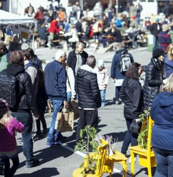 4000 mennesker besøkte festivalen Dyrk nabolaget i 2017. Fredag og lørdag arrangeres festivalen for andre gang. (Foto: Arrangøren)