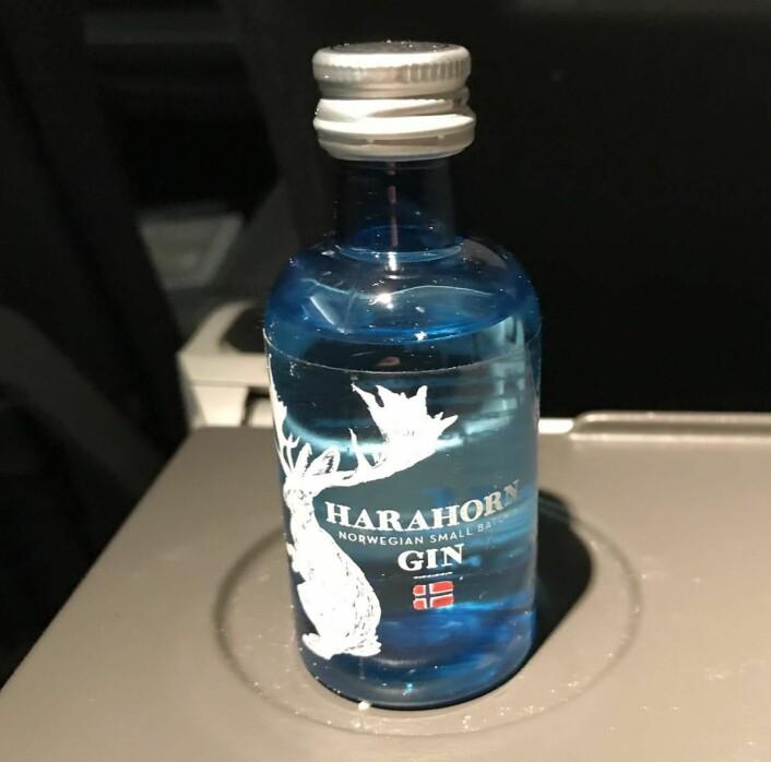 Harahorn på flyet. (Foto: Morten Holt)