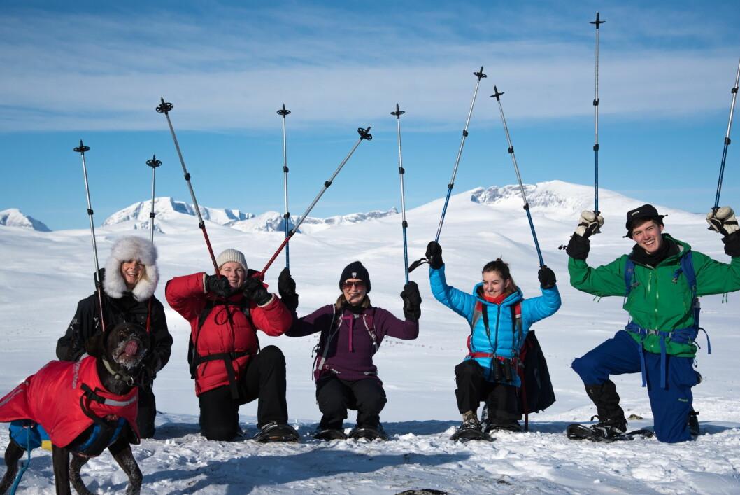 En del av teamet i Up Norway, fra venstre Agneta Linden Moen, Ingrid Maren Roe, Kristian Karlsen, Henriette Bendiksen og Torunn Tronsvang. på Dovrefjell i vinter. Snøhetta i bakgrunnen. (Foto: Sigbjørn Frengen)