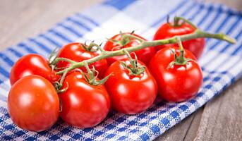 Lag en god tomatsaus