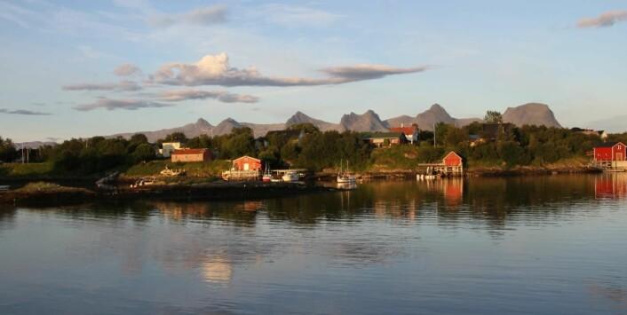 Kan ikke klage på utsikten fra rommene på Herøy Brygge. (Foto: Morten Holt)