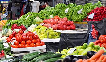 Barnehagene svikter foreldres forventning om sunn mat