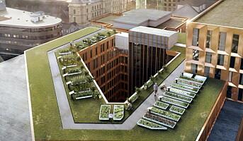 200 kvadratmeter takåker – midt i Oslo