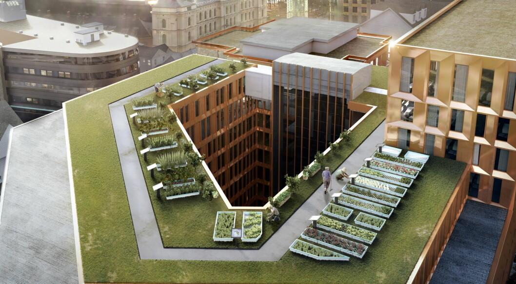 På taket av Clarion Hotel the Hub, vil det bli en stor takåker. Dette kun er en illustrasjon, ikke slik det blir seende ut når den står ferdig. (Illustrasjon: Nordic Choice Hotels).