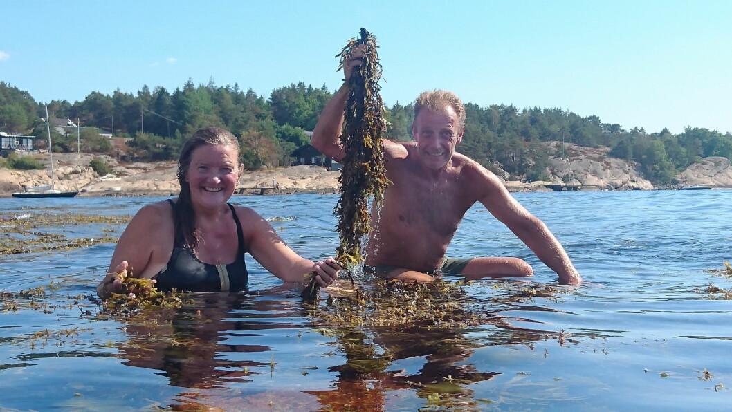 Anne-Lise og Bjørn Viken nyter et bad, midt i matfatet. (Foto: Heidi Fjelland)