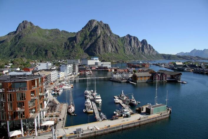 Scandic Hotels driver fra før Scandic Svolvær på øya Lamholmen (litt til høyre i bildet. (Foto: Morten Holt)