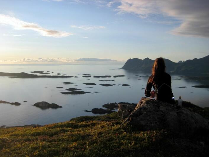 Utsikt utover Bergsfjorden på Senja. (Foto: Morten Holt)