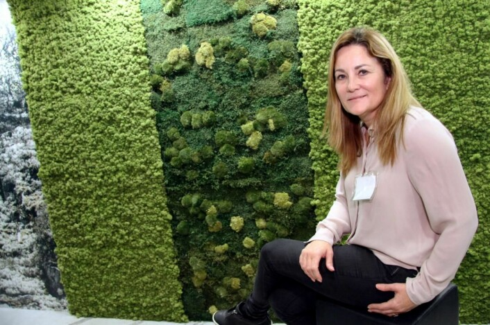 Norsk Mose & Design leverer farget reinlav til blant annet restauranter. Heidi Foss hos bedriften forteller at mange restauranter bruker det i både tak og vegger på grunn av den ekstremt lyddempende effekten – i tillegg til det dekorative. (Foto: Morten Holt)
