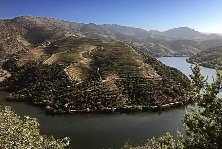 Fra Duoro i Portugal. (Foto: Altia)