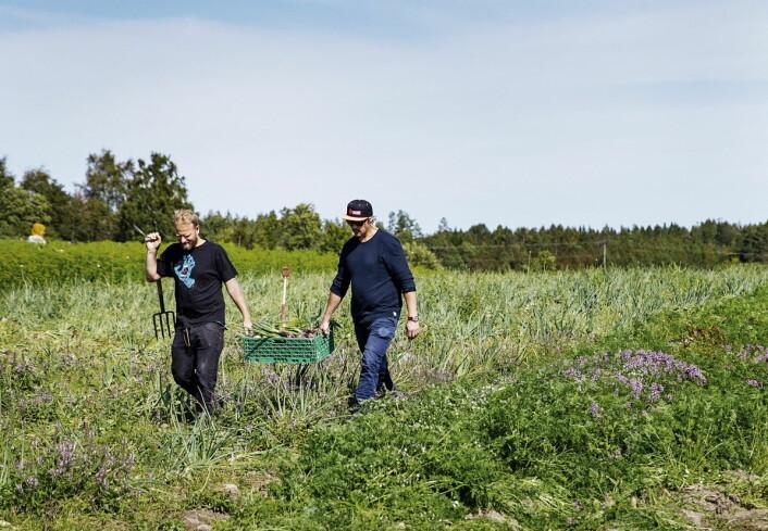 Boka er også en hyllest til norske bønder. (Foto: Grønnsakskokeboka)