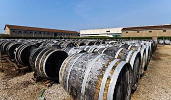 Lanserer vermut fra Piemonte