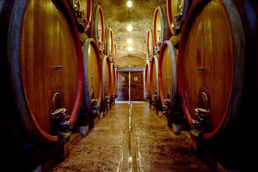 Fra kjelleren hos De Buris, der vinen er lagret. (Foto: Tommasi)