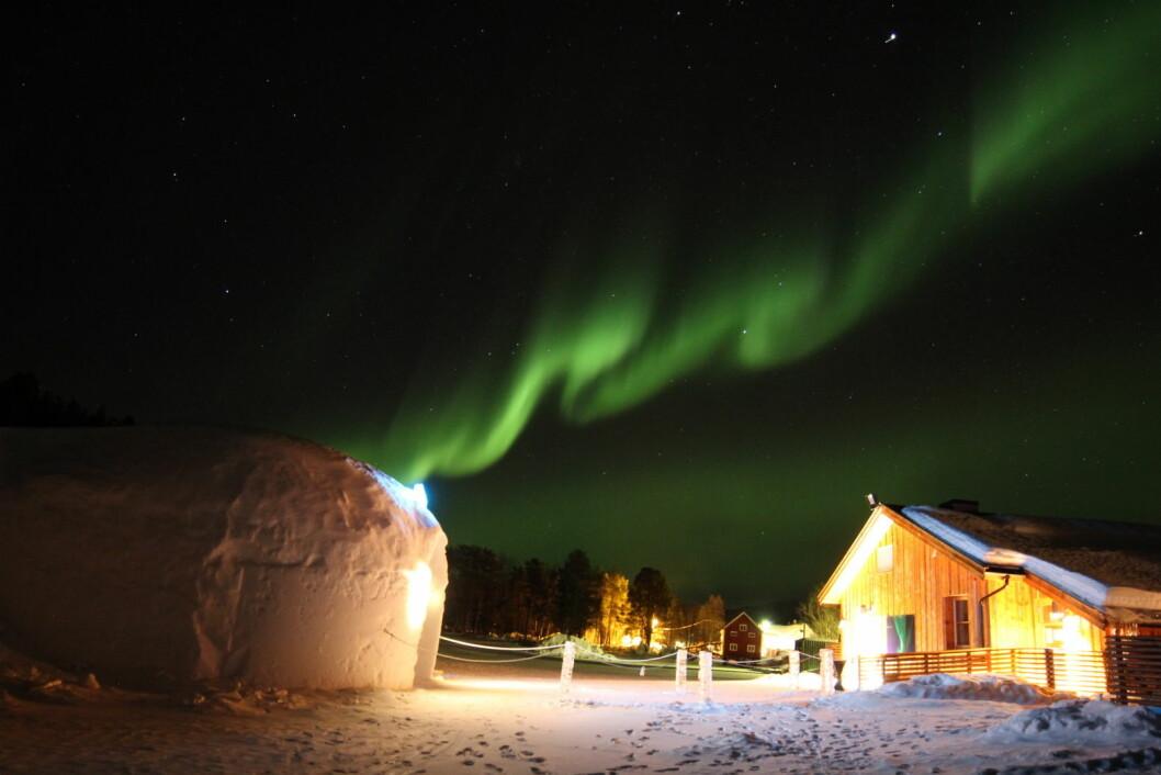 Fra Sorrisniva like utenfor Alta. (Foto: Hotels.com)