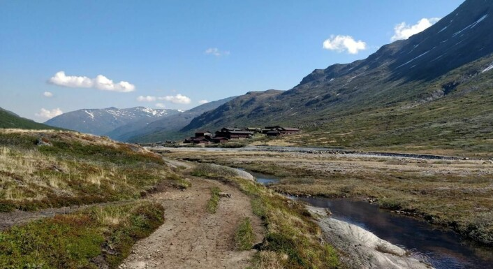 Spiterstulen ligger idyllisk til i Visdalen. (Foto: Spiterstulen Turisthytte)