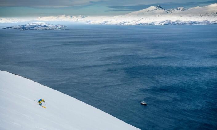 Arktiske råvarer, skikjøring fra fjell til fjære og en inspirerende matopplevelse på MS Nordstjernen. (Foto: Sverre Hjørnevik)