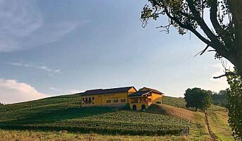 Bersano, den største privateide vingården i Piemonte