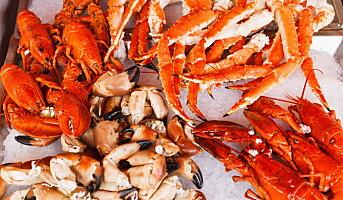Vil du bli Årets sjømatkokk?