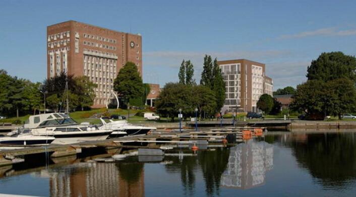 Scandic Park Hotel Sandefjord ble fylkesvinner i Vestfold. (Foto: Arkiv)