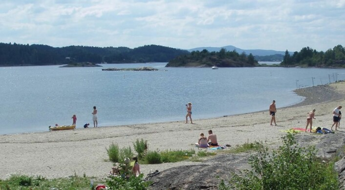 Storøyodden i Bærum. (Foto: FEE Norway)