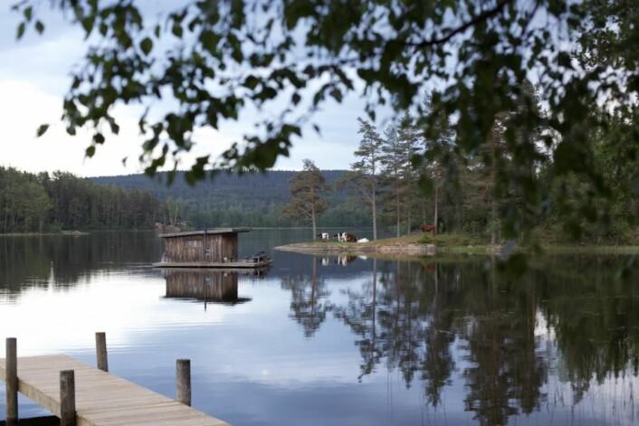 Den flytende hytta på Naturbyn. (Foto: Hanne Marit Tobiassen)