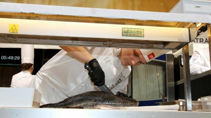 Den siste NM-vinneren, Håvard Werkland, er sist ut i dagens Årets kokk i Mathallen. (Foto: Heidi Fjelland)