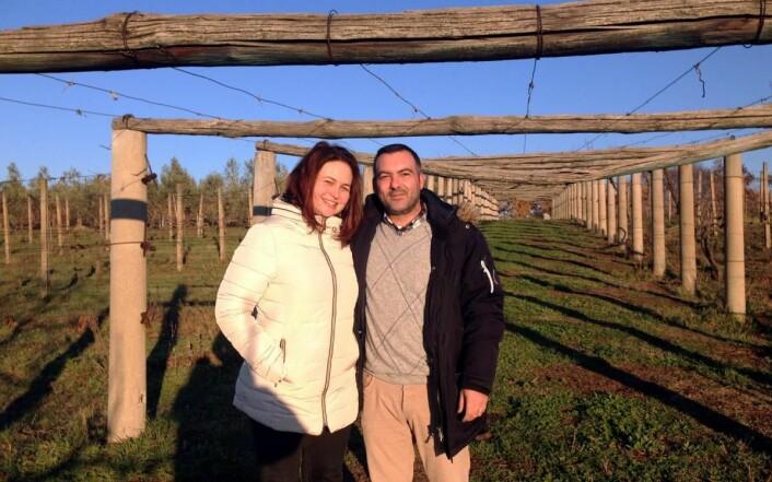 Luca Pennesi har startet vinproduksjon i Norge. (Foto: Privat)