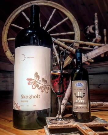 Luca Pennesis viner er på plass på Kleivstua. (Foto: Kleivstua)