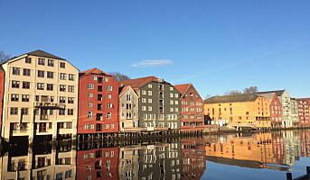 Trondheim og Trøndelag kan bli «European Region of Gastronomy» i 2022