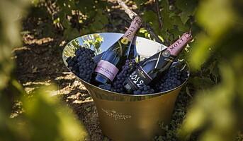 Rosé champagne til Valentinsdagen