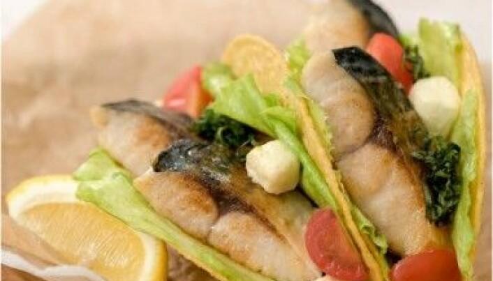 Makrell er trendy i Japan. (Foto: Norges sjømatråd)