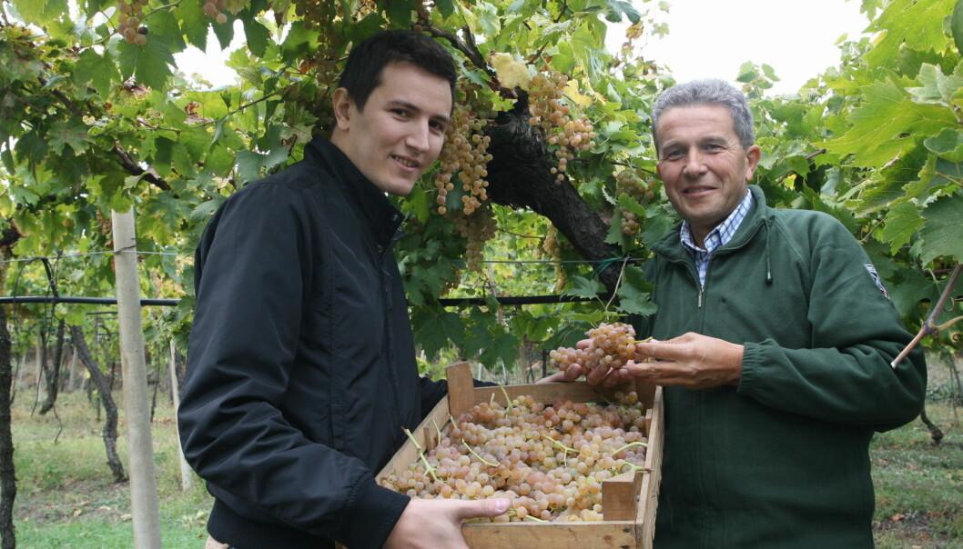 Sandro og Matteo Gini. (Foto: Gini)